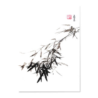 Postcard postkarte bamboo Bambus