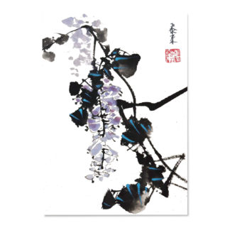 postcard Postkarte Glyzinien wisteria