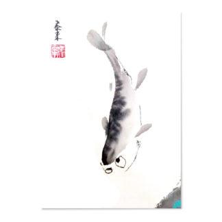 postkarte postcard fish Fisch