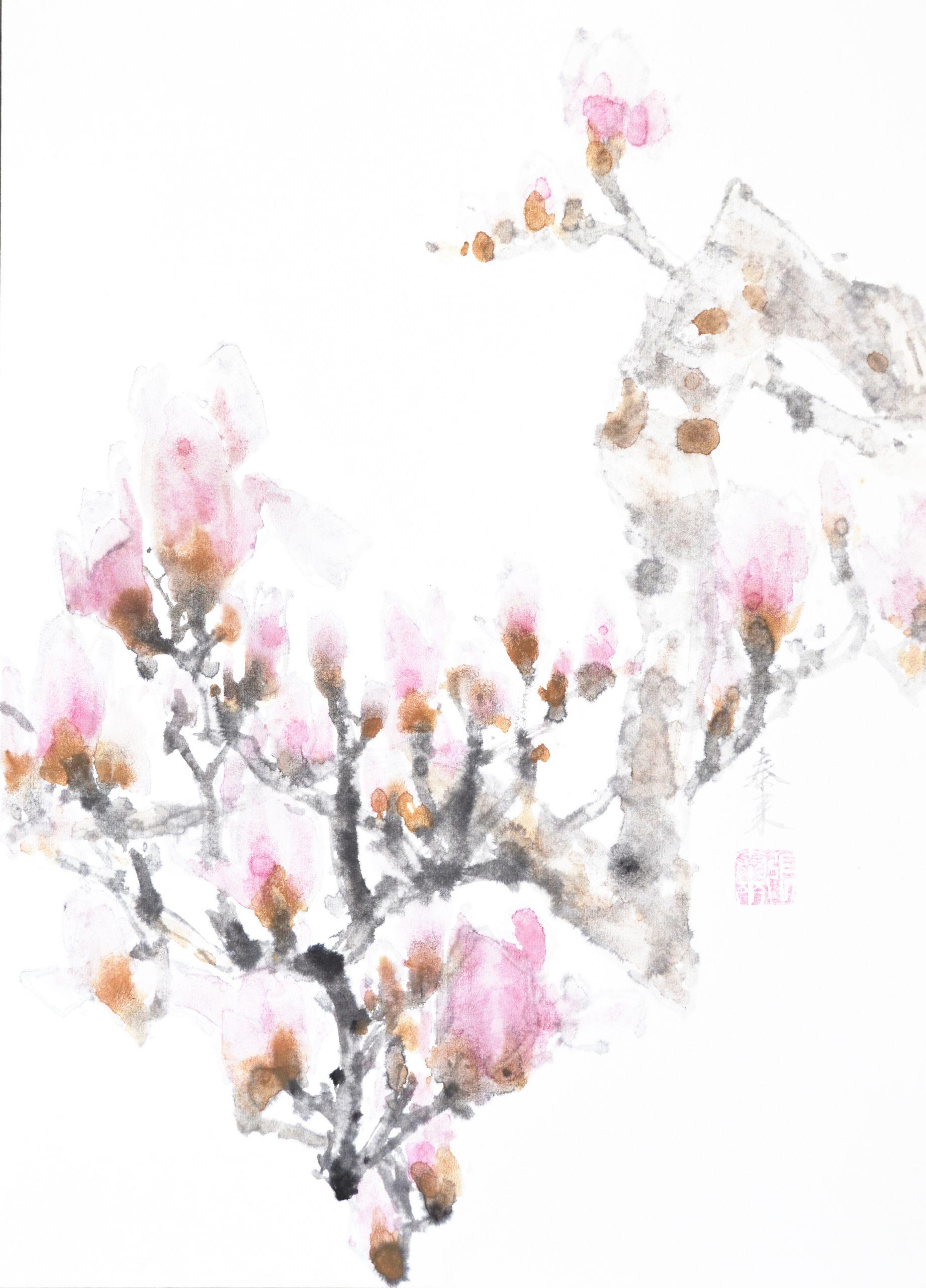 magnolia magnolie chinese japanese ink sumie painting chinesische japanische Tusche Zeichnung Malerei Kunst
